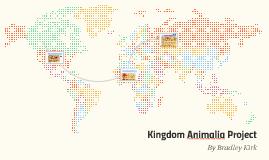 Kingdom Animalia Project