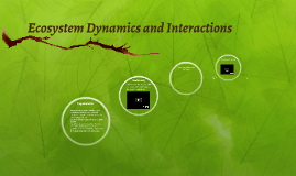 Ecosystem Dynamics and Interactions