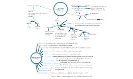 18.Fuentes de las Obligaciones 19. Modos de Extincion