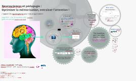 Neurosciences et apprentissage