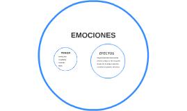 Se generaron emociones