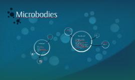 Microbodys