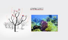 Spongierii sunt un grup de animale nevertebrate, aparținând
