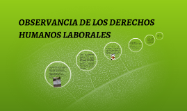 Copy of OBSERVANCIA DE LOS DERECHOS HUMANOS LABORALES