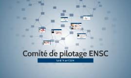 Comité de pilotage ENSC