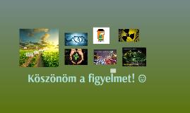 Copy of A környezetszennyezés egészségügyi hatásai az emberekr