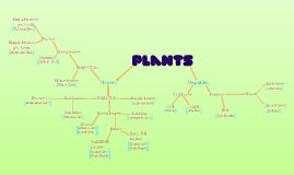 Copy of 5.1.2 Classification Flowchart