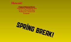 spring break 2010