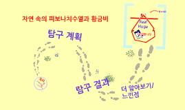 Copy of 피보나치 수열과 황금비