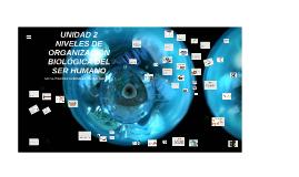 UNIDAD 2 NIVELES DE ORGANIZACIÓN BIOLÓGICA DEL SER HUMANO