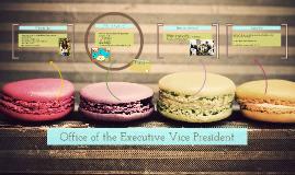 Copy of OEVP Presentation