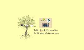 Copy of Taller Jec de Prevención de Riesgos para 5° básicos 2015