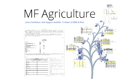 Copy of MF Agriculture Case #4