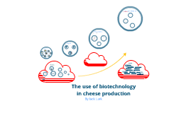 Copy of Biotechnology in cheese production