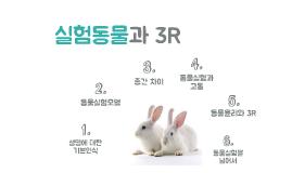 동물실험과 3R의 원칙