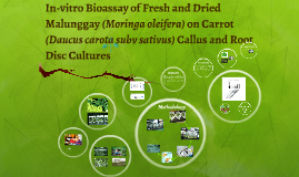 Copy of Copy of In-vitro Bioassay of Fresh and Dried Malunggay (Moringa olei