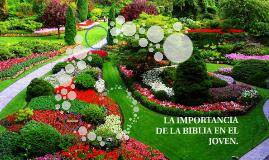 Copy of LA IMPORTANCIA DE LA BIBLIA EN EL JOVEN.