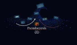 Pseudocyesis