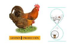 Copy of Sistema de repoblación de granjas avícolas