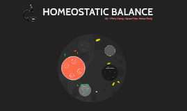 Homeostatic Balance