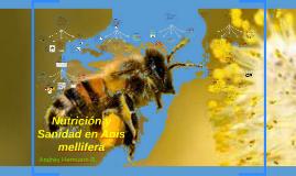 Nutrición y Sanidad en Apis mellifera