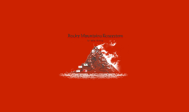 Rocky Mountains Ecosystem
