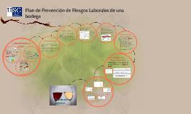 Plan de Prevención de Riesgos Laborales de una bodega