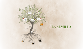 Copy of LA SEMILLA