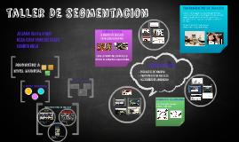 taller de segmentacion