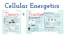 AP Bio Prezi 16 - Bioenergetic Theory & Enzymes