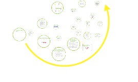 Referral Process for Behavior POI/Overall Knowledge of Behavior POI