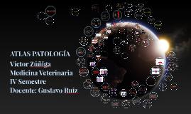 Copy of ATLAS PATOLOGÍA