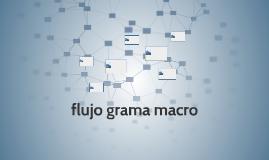 flujo grama macro