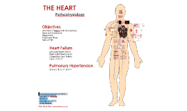 Copy of Heart Failure & Pulmonary Hypertension
