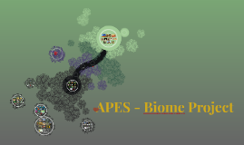 APES - Biome Project