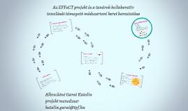 Az EFFeCT projekt és a tanárok kollaboratív tanulását támoga