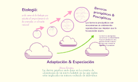 Copy of Adaptación & Especiación.