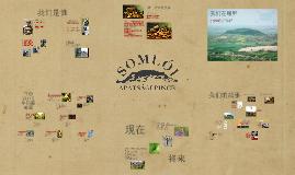 Somlói Apátsági Pince '13 - Simplified Chinese