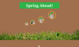 spring procedures review
