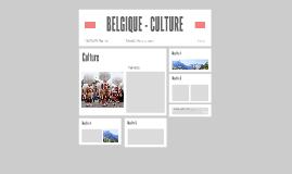BELGIQUE - CULTURE