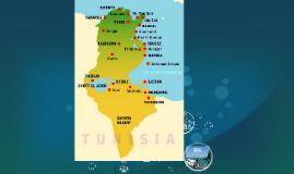 Stability in Tunisia