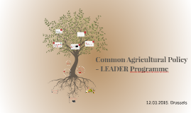 Common Agricultural Policy - LEADER Programme