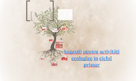 Sugestii pentru activităţi ecologice în ciclul primar