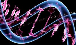 Genetics Concept Map