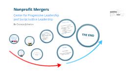 SOWK 4008: Nonprofit Mergers