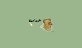 17. Evolución
