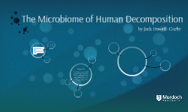 The Microbiome of Human Decomposition
