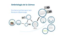 Embriología de la Córnea