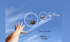 Tea Trade during Commercial Revolution