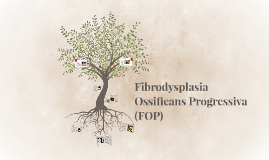 Fibrodysplasia Ossificans Progressiva (FOP)